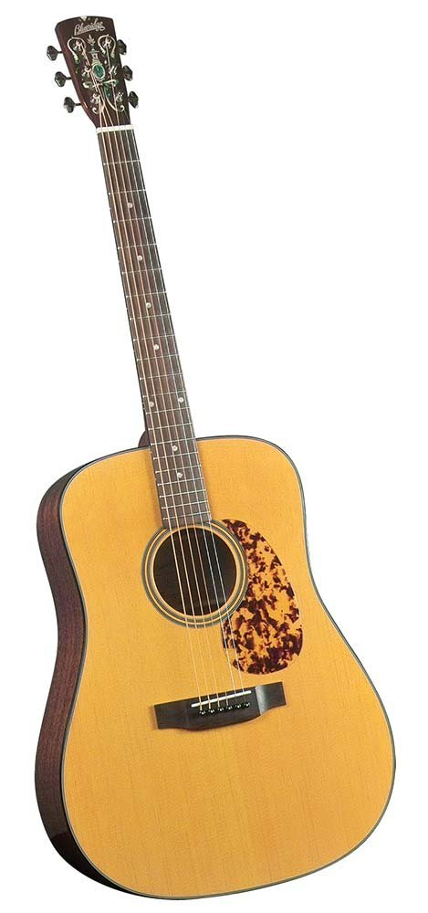 buy the Blueridge BR-140 acoustic guitar